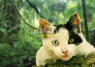 Cat-Brush-Work
