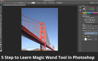 5 Step to Learn Magic Wand Tool in Photoshop
